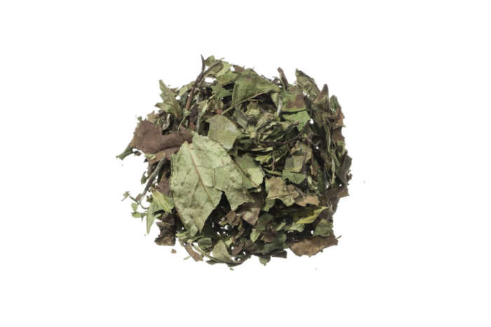Bio Weißer Tee White Tam Duong angenehme Honignote lose 21651S100