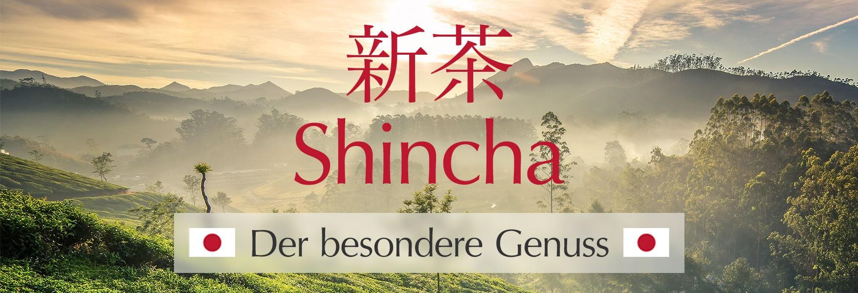 Shincha – Der besondere Genuss